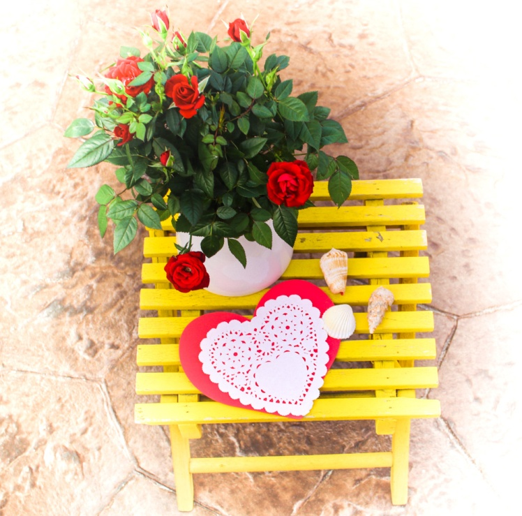 Valentines-desk-red-rose-Ipuna-Black