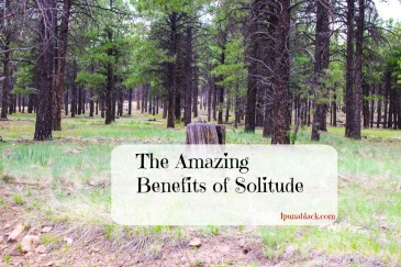Forest-amazing-benefits-of-solitude-Ipuna